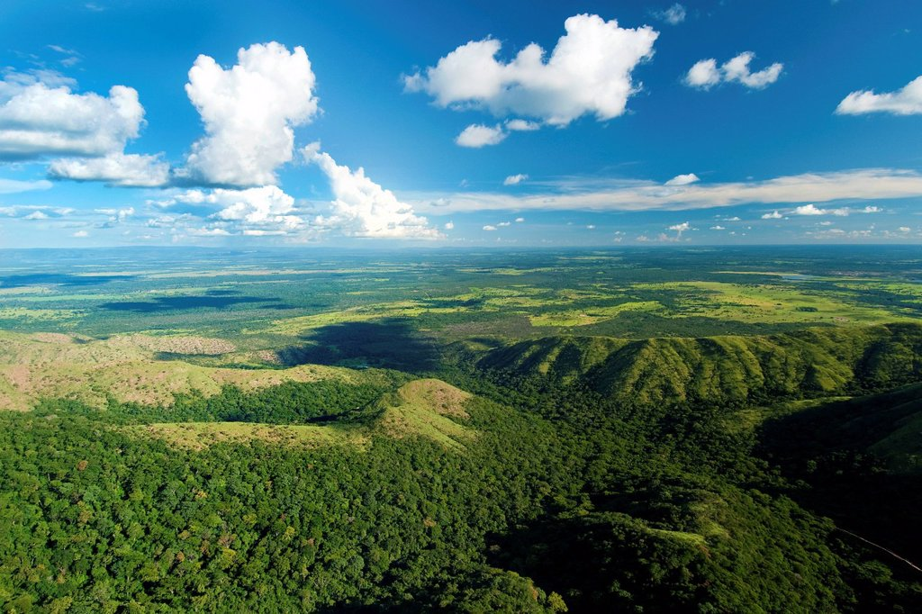 Chapada dos Guimaraes National Park, Pantanal, Southwestern Brazil, South America : Stock Photo