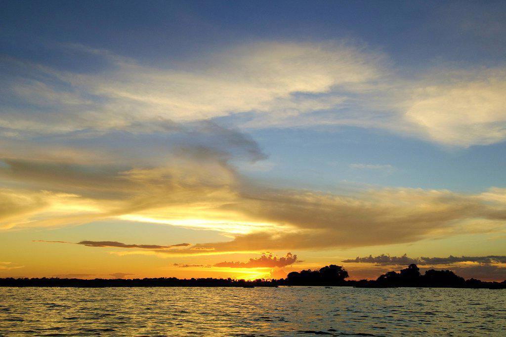 Stock Photo: 1990-49161 Pantanal wetlands, Southwestern Brazil, South America