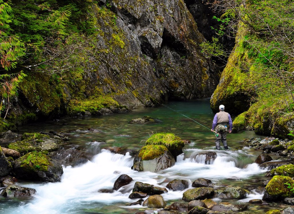 Fly fishing on the Heber River, Vancouver Island, British Columbia, Canada : Stock Photo