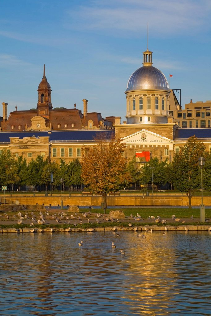 Stock Photo: 1990-49405 Bonsecours Market at sunrise in autumn, Old Montreal, Quebec, Canada