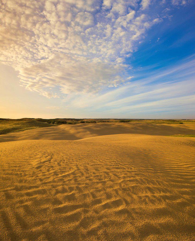 Detail of Great Sandhills near Leader, Saskatchewan, Canada. : Stock Photo