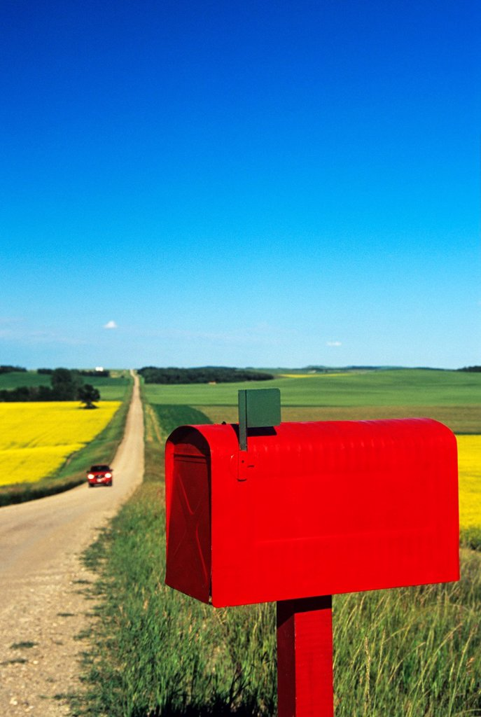Stock Photo: 1990-52255 mailbox along country road with grain and canola fields in the background, near Somerset, Manitoba, Canada,