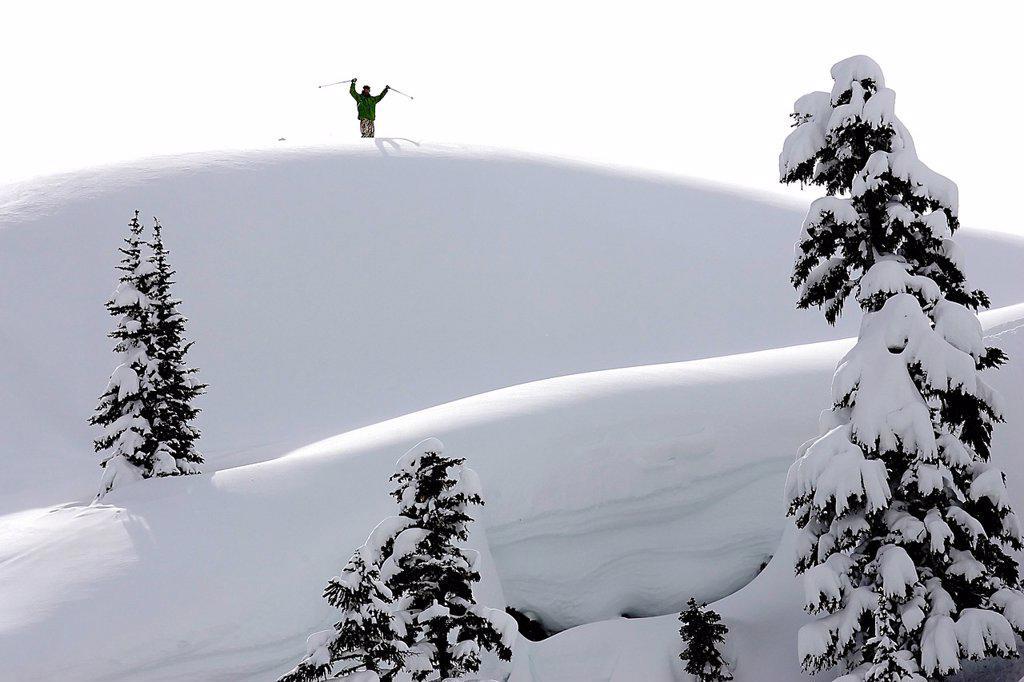 skier on ridge, Whistler, BC, Canada : Stock Photo