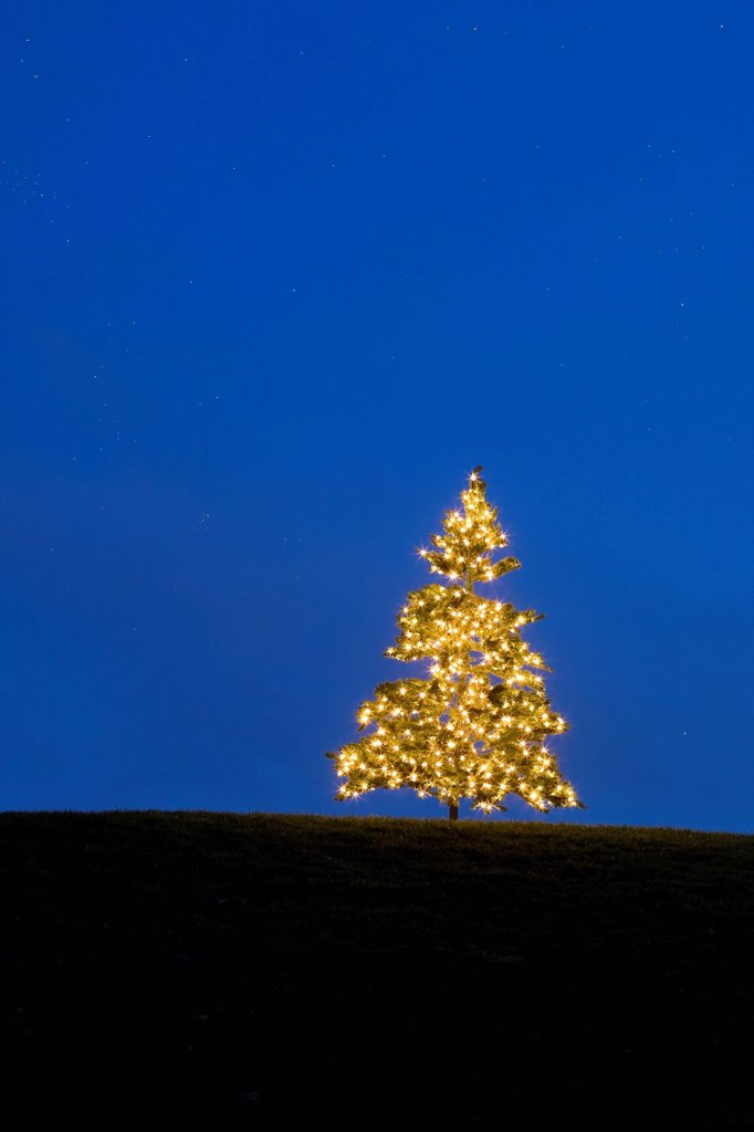 Stock Photo: 1990-54727 A lone Christmas tree lights on a hilltop creates an intersting design in light and color.