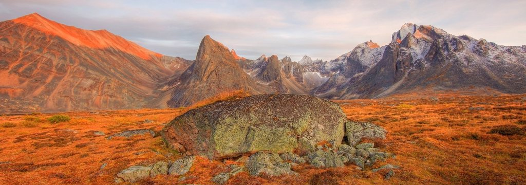 Stock Photo: 1990-56565 Alpenglow on Mount Monolith, Yukon. Autumn in the Tombstone Valley, Tombstone Territorial Park, Yukon. Large glacial erratic or boulder on valley floor.