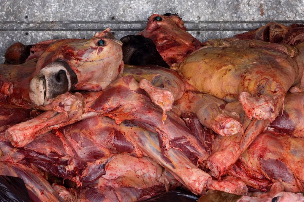 Meat in deliver truck, in Zihuatanejo, Mexico : Stock Photo