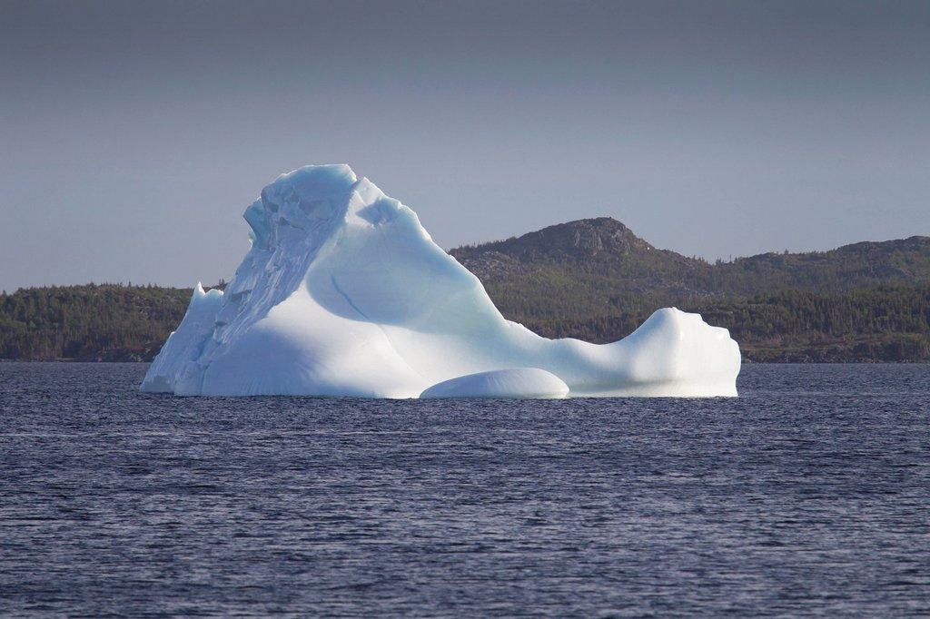 An iceberg near the shore St. Lunaire_Griquet, Newfoundland and Labrador, Canada : Stock Photo