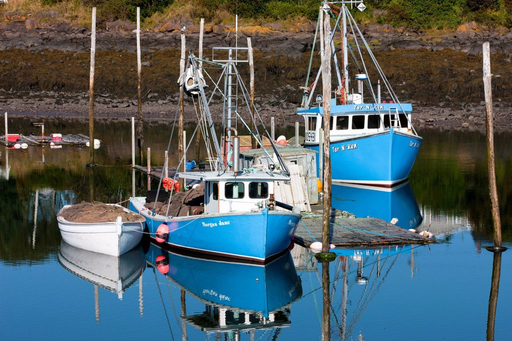 Fishing boats tied up at Seal Cove Harbour, Grand Manan Island, Bay of Fundy, New Brunswick, Canada : Stock Photo