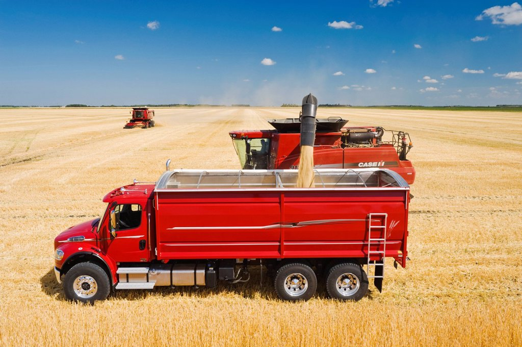Stock Photo: 1990-61130 a combine augers barley into a farm truck during the harvest, near Dugald, Manitoba, Canada