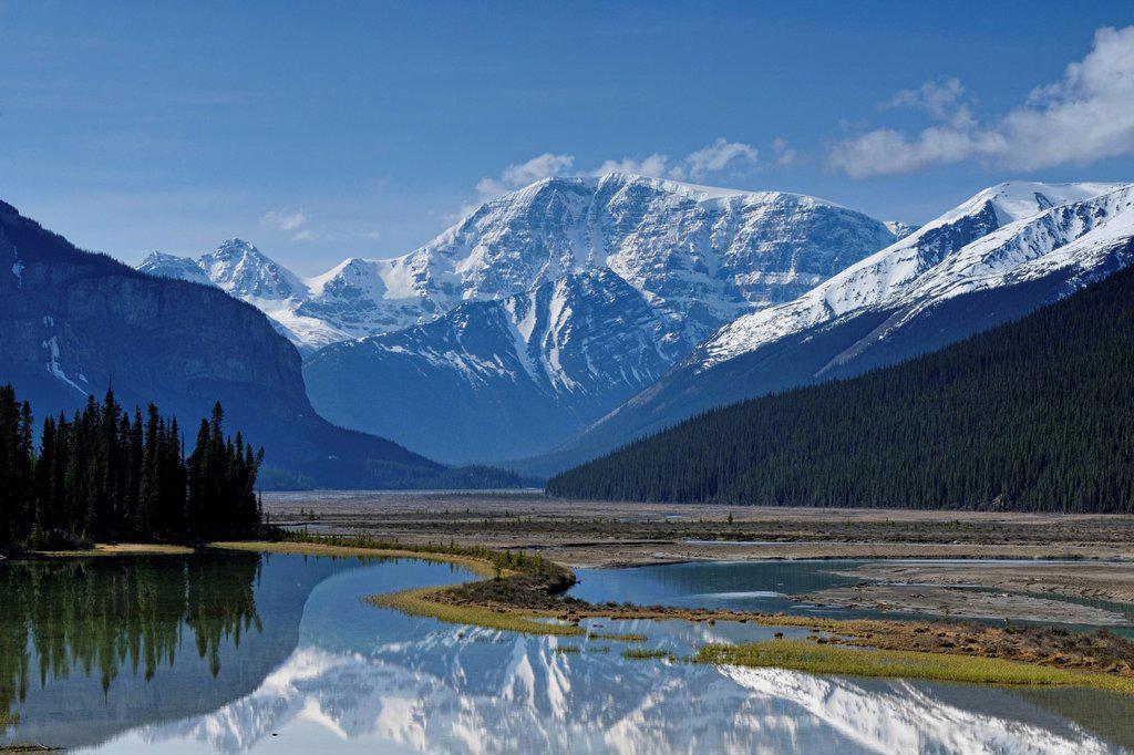 Stock Photo: 1990-61358 Mt. Kitchener reflected in the Beauty Creek pool near the Sunwapta River, Jasper, Alberta, Canada