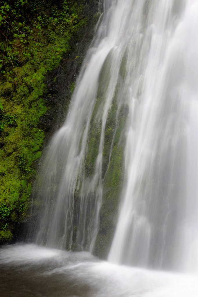 Madison Falls, Olympic National Park, Washington, USA : Stock Photo