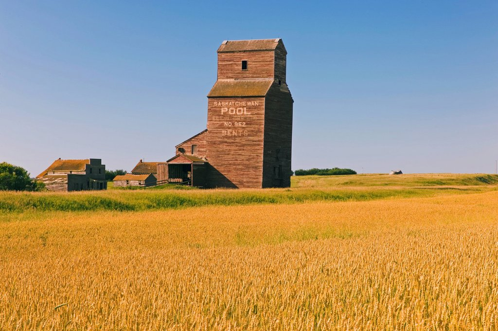 Stock Photo: 1990-61421 wheat field, old grain elevator, abandoned/ghost town of Bents, Saskatchewan, Canada