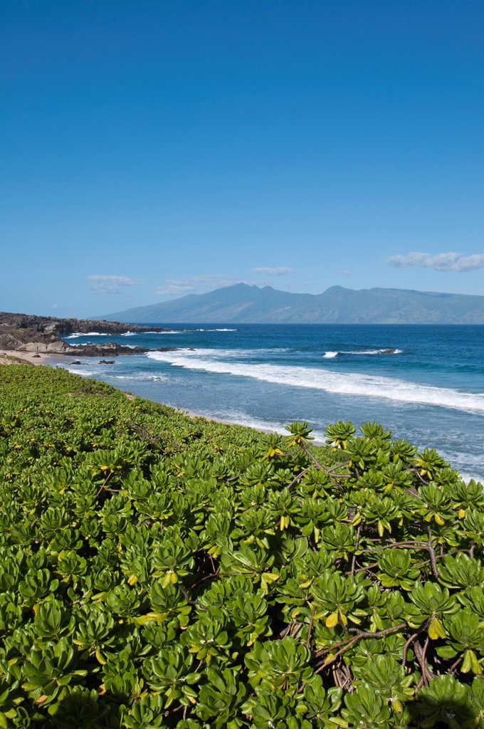 Shorline at Kapalua, Lanai in distance, Maui, Hawaii, United States of America : Stock Photo