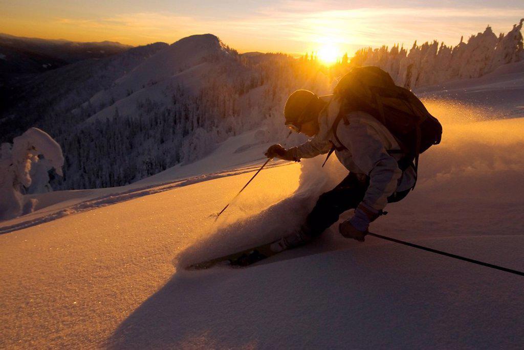 Woman ski instructor backlit with alpenglow, sunset, skiing powder down Evening Ridge, Whitewater ski resort, Nelson, British Columbia, Canada : Stock Photo