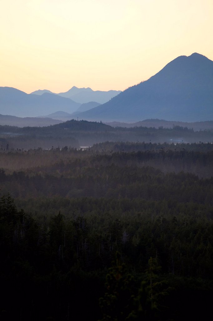 Radar Hill in Pacific Rim National Park near Tofino, British Columbia, Canada on Vancouver Island in Clayoquot Sound UNESCO Biosphere Reserve. : Stock Photo