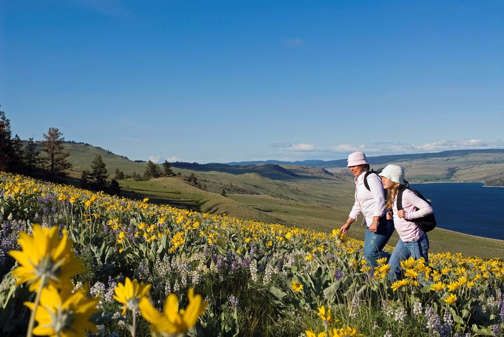 Stock Photo: 1990-6572 A mother and daughter enjoy a hike through the spring wildflowers above Stump Lake, just south of Kamloops, British Columbia, Canada