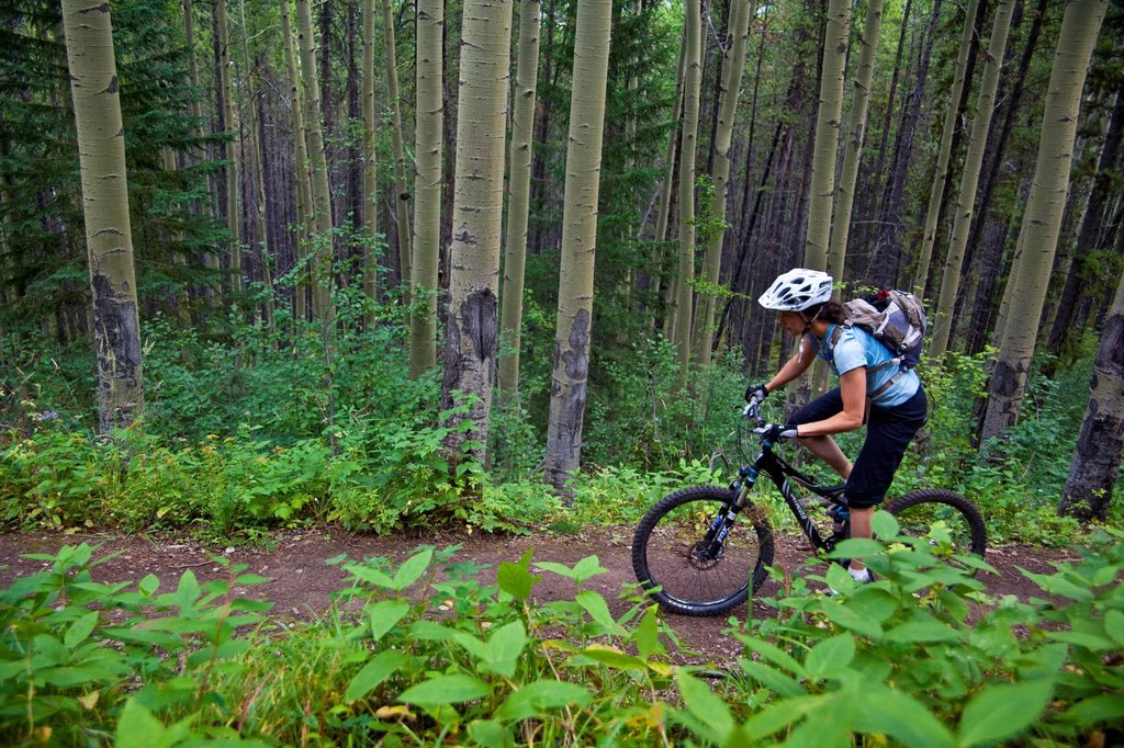 A female mountain biker riding the Highline trail in Canmore, AB : Stock Photo
