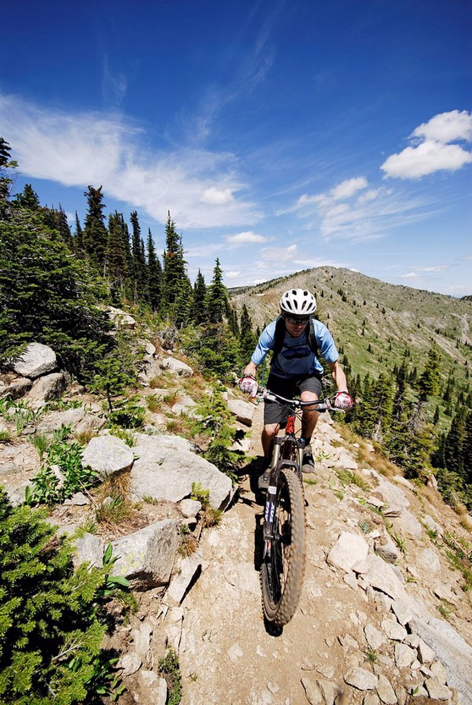Stock Photo: 1990-7277 Man bikes the Seven Summits trail, Rossland, British Columbia, Canada