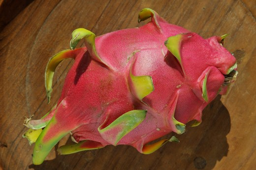 Close-up of a pitaya : Stock Photo