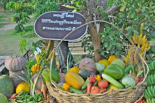Vegetables in a basket, Chiang Mai, Thailand : Stock Photo