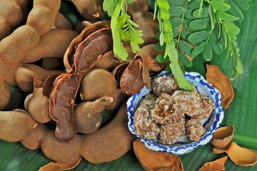 Stock Photo: 2003-602221 Close-up of tamarind