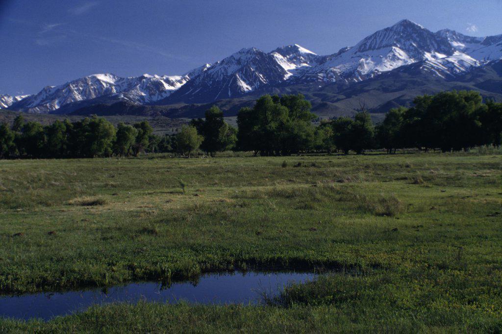 Stock Photo: 2005-1056 Sierra Nevada Mountains California USA