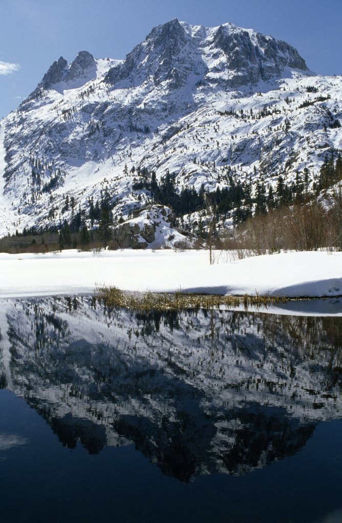 Reflection of a snow covered mountain in water, Carson Peak, Silver Lake, Californian Sierra Nevada, California, USA : Stock Photo