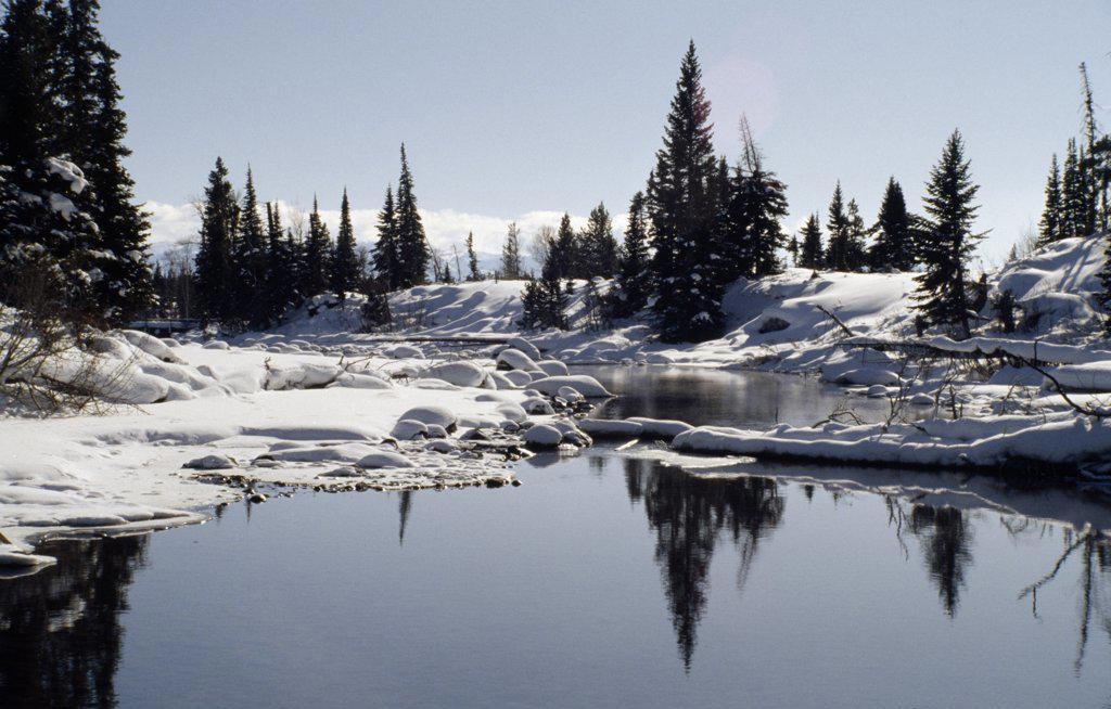 Blacktail Pond Grand Teton National Park Wyoming USA : Stock Photo