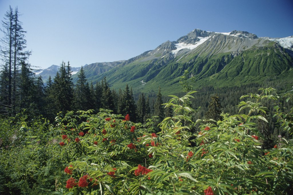 Takhinsha Mountains