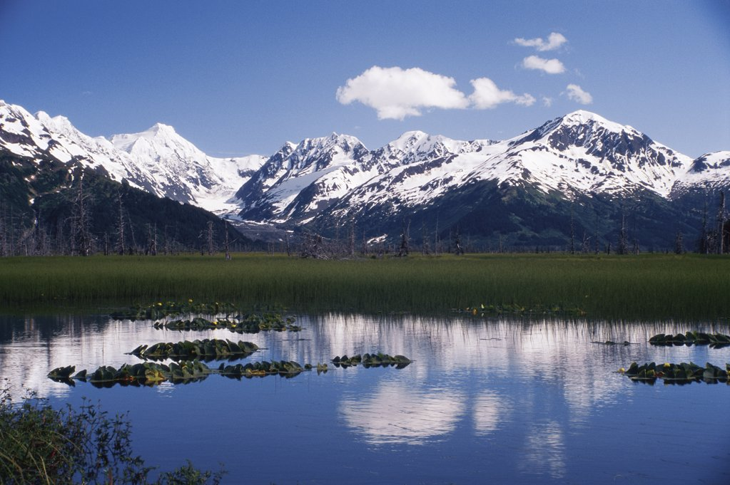 Stock Photo: 2005-1721 Kenai Mountains
