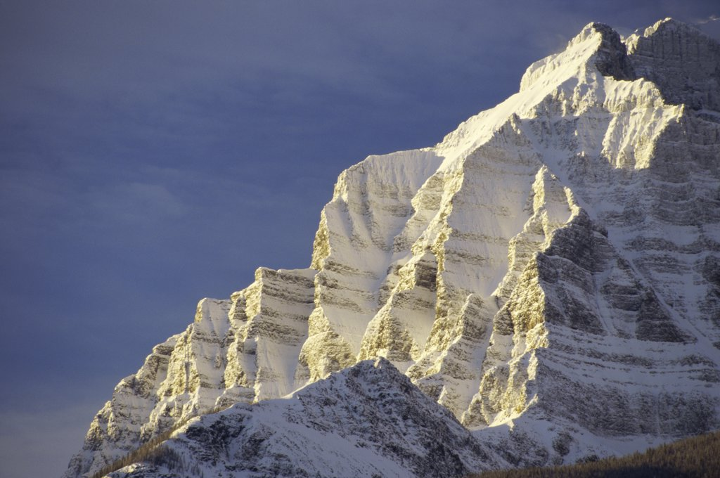 Low angle view of a snowcapped mountain, Mount Temple, Banff National Park, Alberta, Canada : Stock Photo