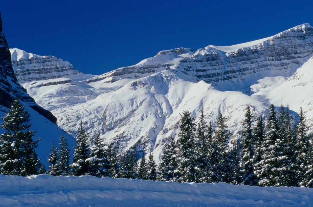 Panoramic view of snowcapped mountains, Mount Jimmy Simpson, Banff National Park, Alberta, Canada : Stock Photo