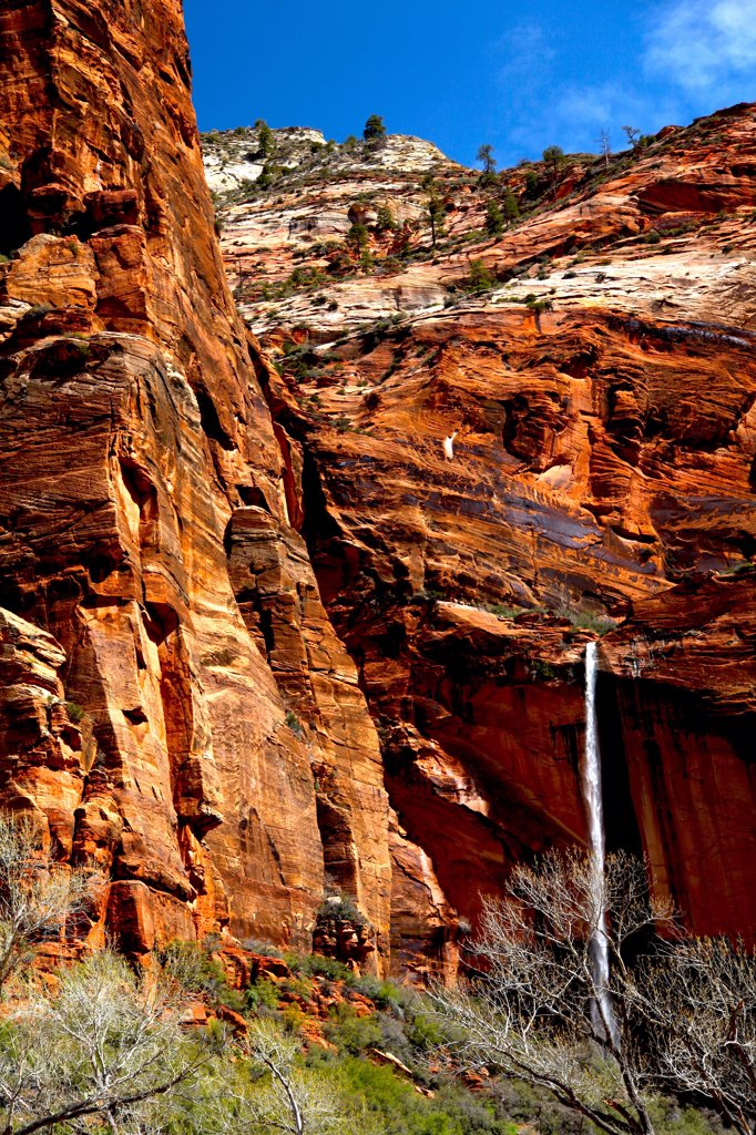 Water falling from mountain, Weeping Rock Waterfall, Zion National Park, Utah, USA : Stock Photo