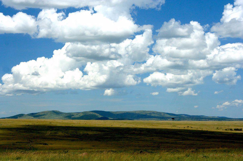 Kenya, Masai Mara Game Reserve, Clouds over Grasslands : Stock Photo