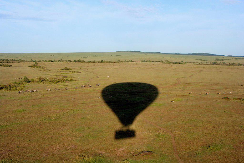 Kenya, Masai Mara Game Reserve, Hot air balloon shadow : Stock Photo