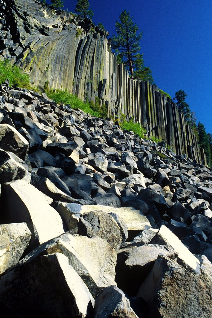 Low angle view of basalt columns, Devils Postpile National Monument, Californian Sierra Nevada, California, USA : Stock Photo