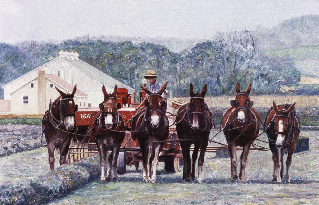 Stock Photo: 2026-412 Harvest, Amish Mules, PA. 2000 Anthony Butera (b.20th C.) Oil