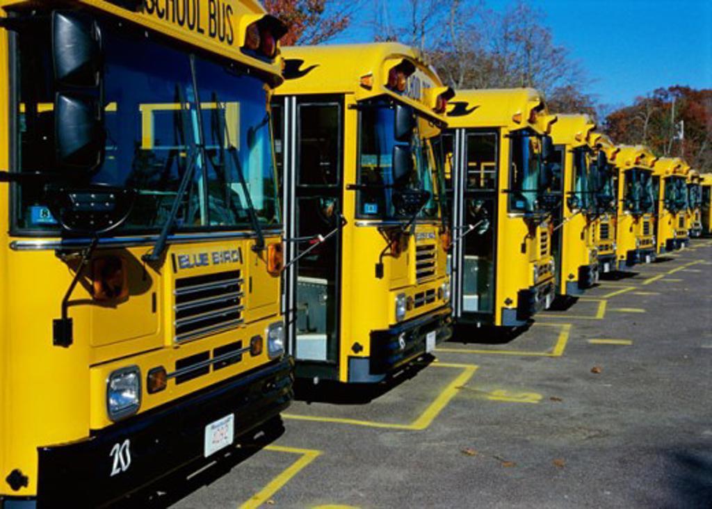 Stock Photo: 2030-825 An array of school buses, Gloucester, Massachusetts, USA