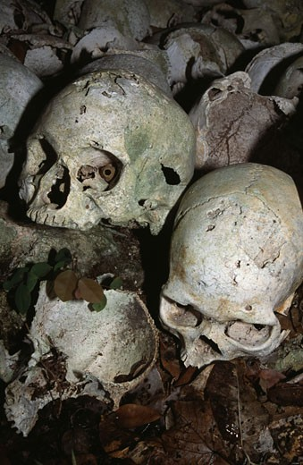 Human skulls in a burial cave, Papua New Guinea : Stock Photo