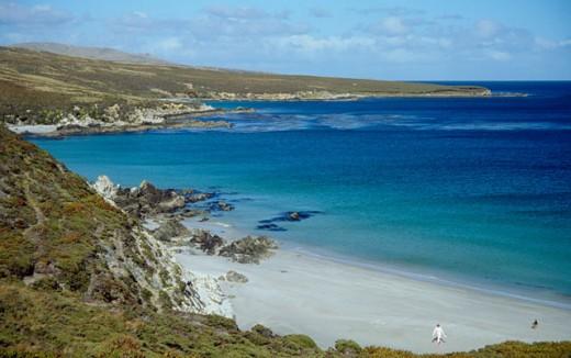 Stock Photo: 2035-453 Falkland Islands