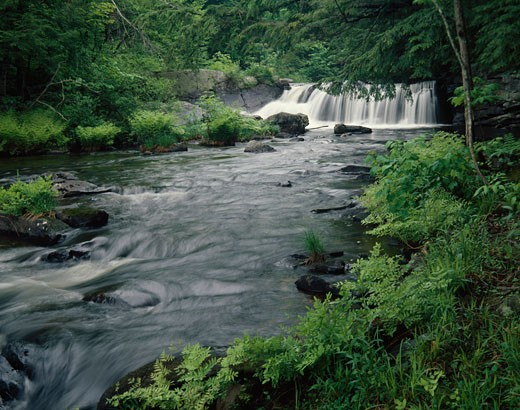 River flowing through a forest, Wells River, Newbury, Vermont, USA : Stock Photo