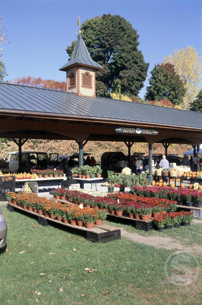 Farmer's Market Saratoga Springs New York USA : Stock Photo