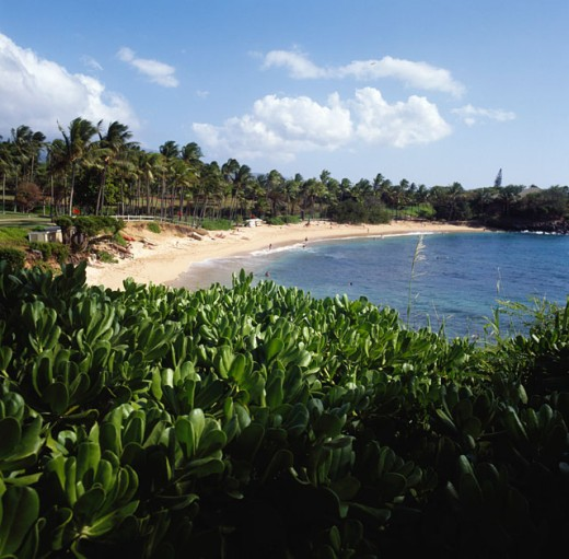 Stock Photo: 2050-593165 Kapalua Beach