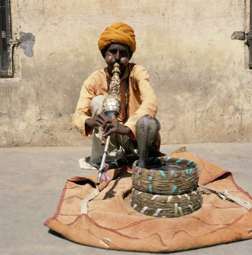 Snake Charmer