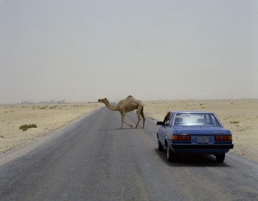 Desert Road