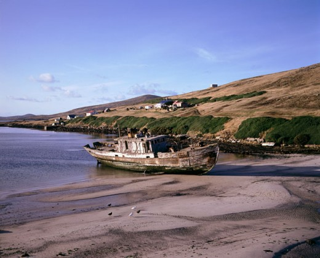 Stock Photo: 2058-903B South Harbor West Point Island Falkland Islands