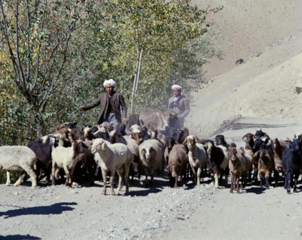 Stock Photo: 2070-460 Hajigak Pass Kuh-e-Baba Mountains Afghanistan