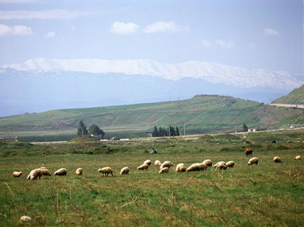 Lebanon Mountains Near Homs Syria : Stock Photo
