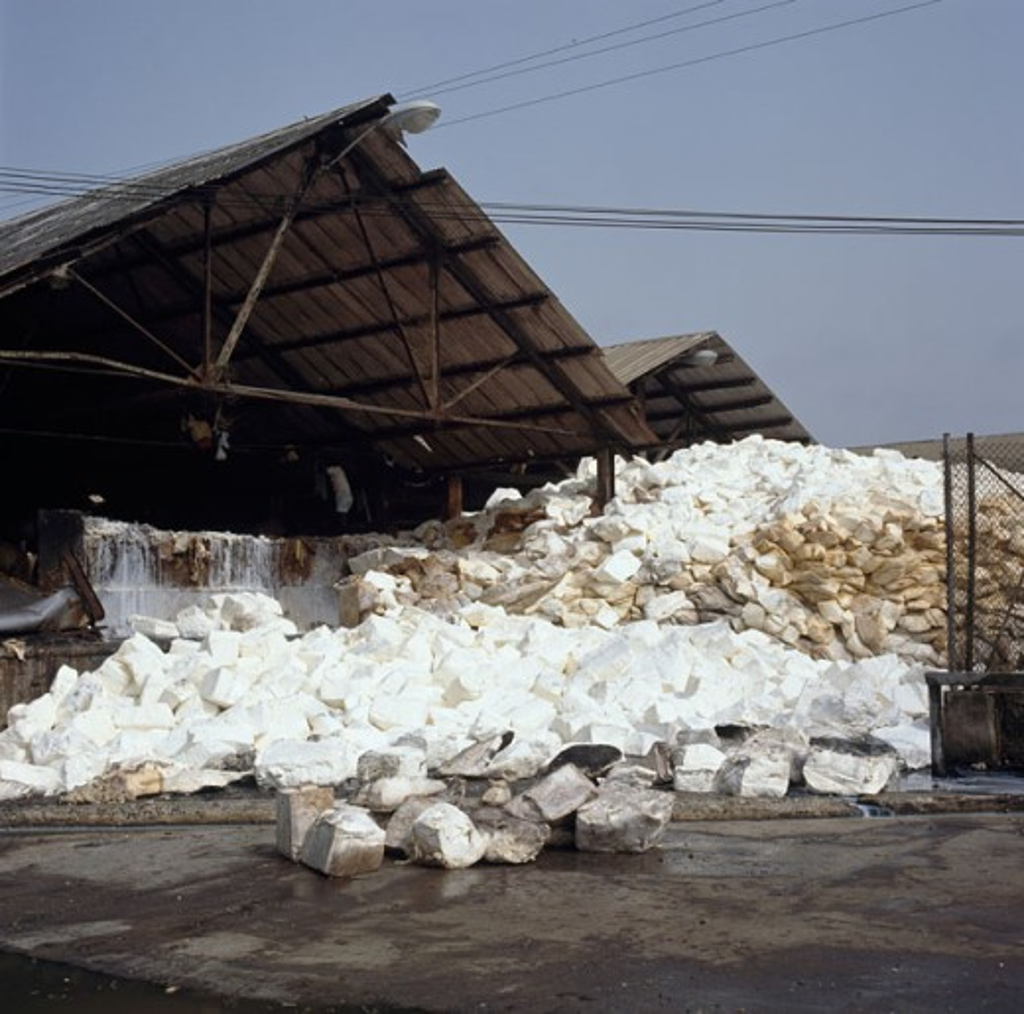 Stock Photo: 2106-820 Latex Firestone Rubber Plantation Harbel Liberia