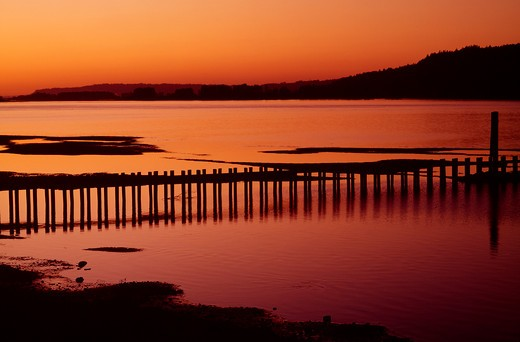 USA, Oregon, Columbia Gorge National Scenic Area, Sand trapping pilings near Troutdale at sunset : Stock Photo